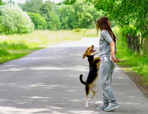 Joggerin und Hund